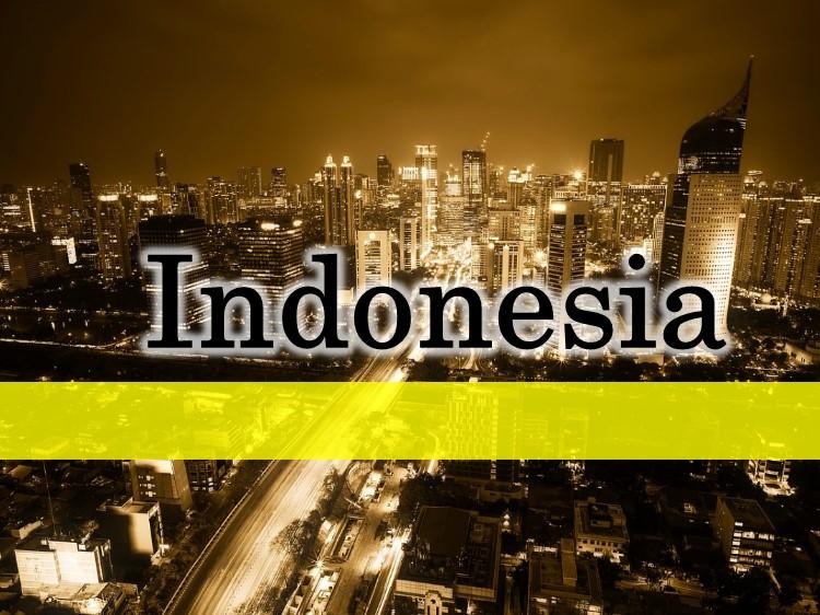 インドネシア進出ブログ